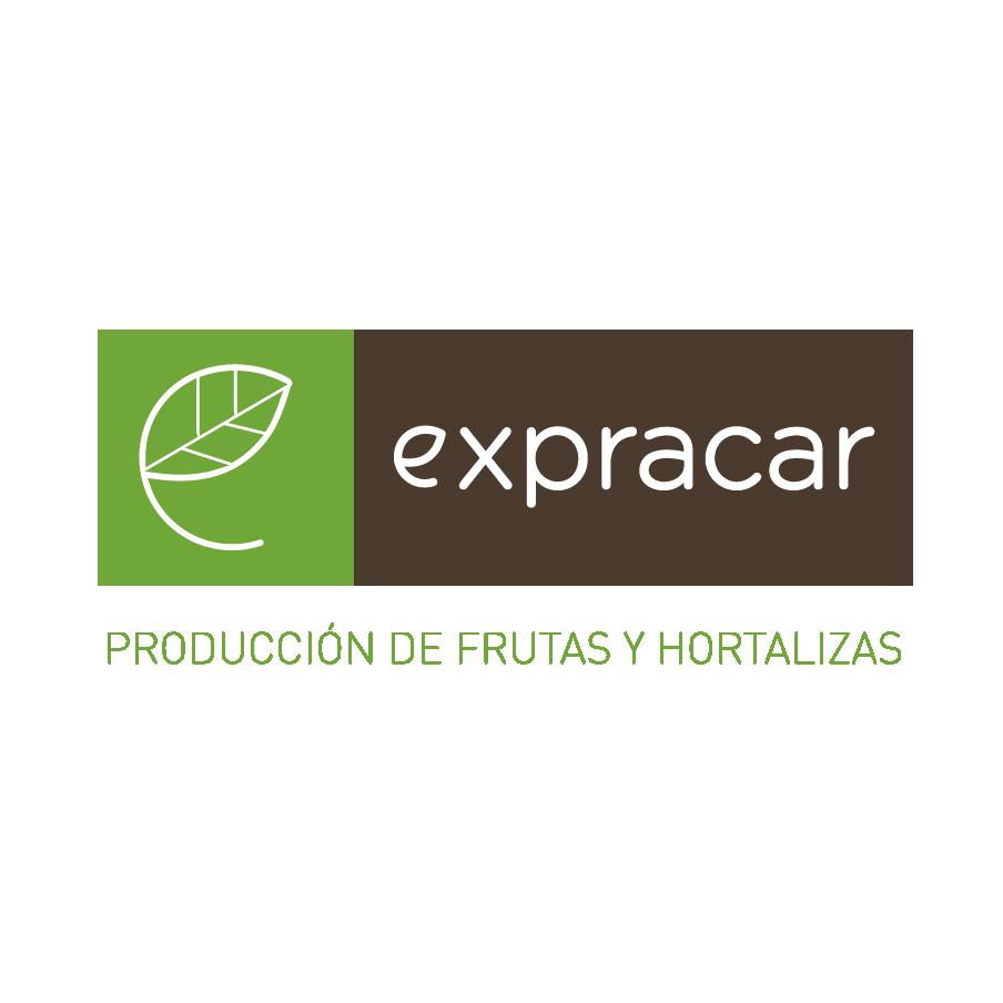 Roymaga gasolineras roymaga petroleos grupo roca for Servicio tecnico roca murcia